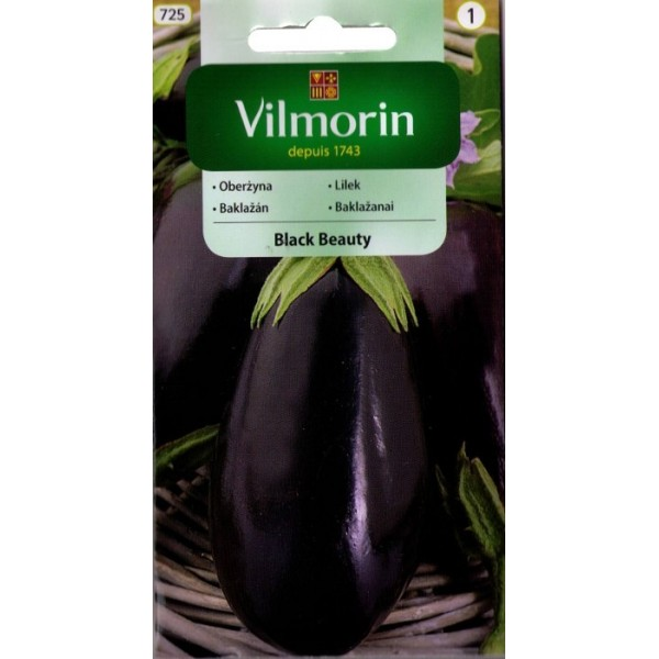 Oberżyna (bakłażan) 'Black Beauty' Vilmorin